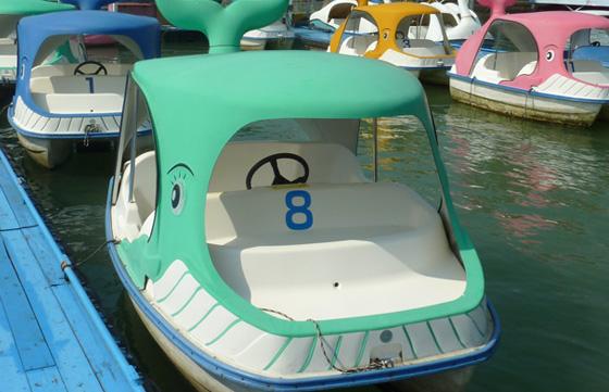 相模湖を家族で楽しもう2〜3名