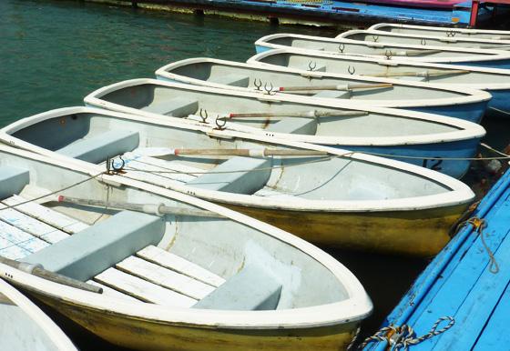釣り船手こぎボート2名
