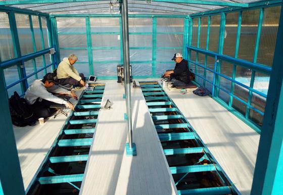 相模湖のわかさぎドームで釣るわかさぎ